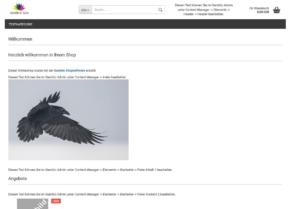 Orange Raven Testshop Frontend